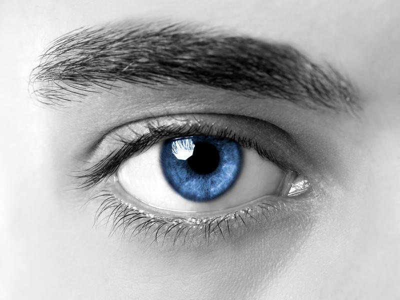 visual web eye