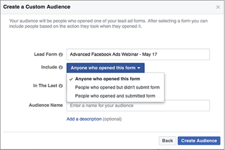 lead ads custom audience