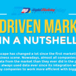 Data-Driven Marketing in a Nutshell (Infographic)